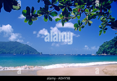 Tobago Charlotteville Man of War bay beach - Stock Image