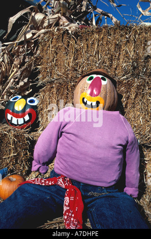 Halloween pumpkins  dummies with painted pumpkin faces smiling Fall Colors autumn - Stock Image