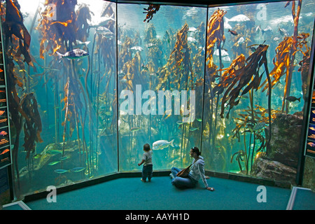 south africa cape town waterfront aquarium - Stock Image