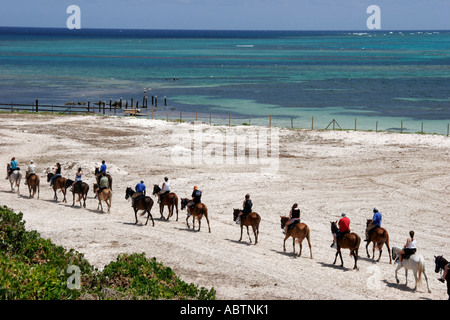 Grand Turk Atlantic Ocean Indigenous Horse Shelter horseback riding beach - Stock Image