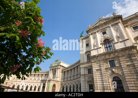Vienna Museum of ethnology and National Library - Stock Image