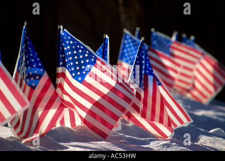 AMERICAN FLAGS IN THE SNOWY FRONT YARD OF A MINNESOTA HOME. WINTER. - Stock-Bilder