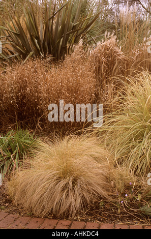Rhs wisley surrey design stock photos rhs wisley surrey for Tall grass border