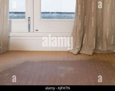 A wet carpet - Stock-Bilder