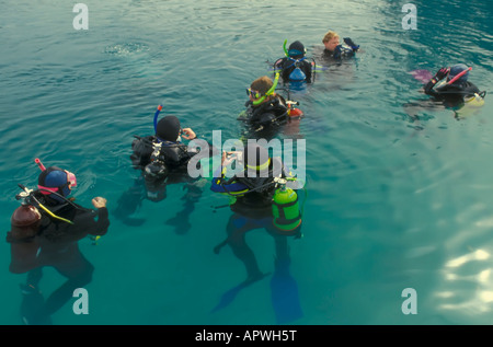 Group of seven scuba divers in wet suits float on gree water surface of a Florida spring - Stock Image