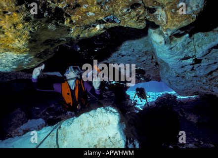 Ginnie Springs Florida fresh water spring cavern scuba sport diving High Springs, FL, fla, divers at cave mouth - Stock Image