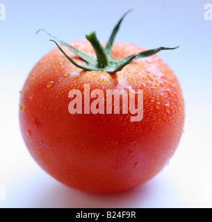 Tomato objects on white background - Stock Image
