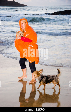Mature woman wearing an orange kagool walking her two Yorkshire Terrier dogs along the shore at Harlyn Bay, Cornwall, - Stock-Bilder