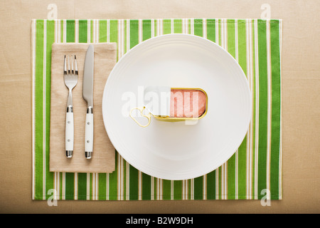 A can of ham on a plate - Stock Image