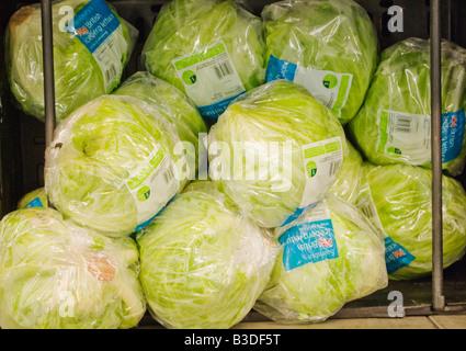 Fresh Dog Food For Sale At Asda