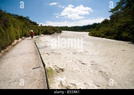 Silica Terrace at the Wai-O-Tapu thermal area, near Rotorua, North Island, New Zealand - Stock Image