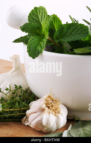 Assortment of herbs with kitchen mortar and pestle Studio shot against white background - Stock Image