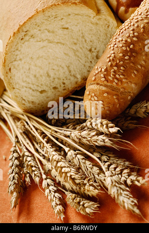 bread composition - Stock Image