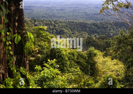 Suriname, Brownsweg, Brownsberg National Park. View on forest and Brokopondo lake. - Stock Image