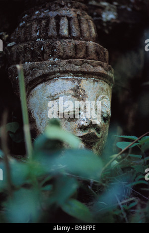 Placid face of Buddha, statue in forest - Stock Image