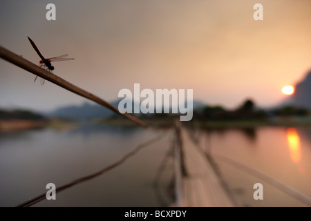 a dragonfly on the bridge over the Nam Song River at Vang Vieng at sunset, Laos - Stock-Bilder