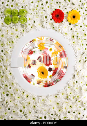A washing machine made of flowers - Stock Image