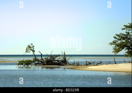Holbox Island, Quintana Roo, Yucatán Peninsula, Mexico, a unique Mexican destination in the Yucatan Channel - Stock Image