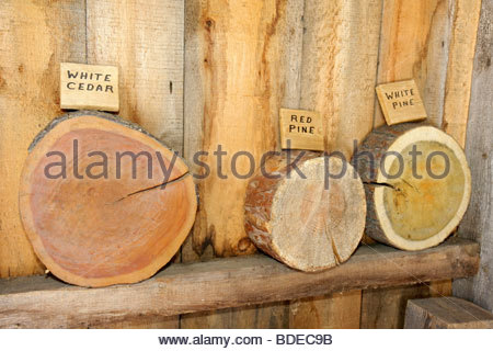 Mackinaw City Michigan Mackinac State Historic Parks Park Historic Mill Creek Discovery Park British Workshop woodworking - Stock Image