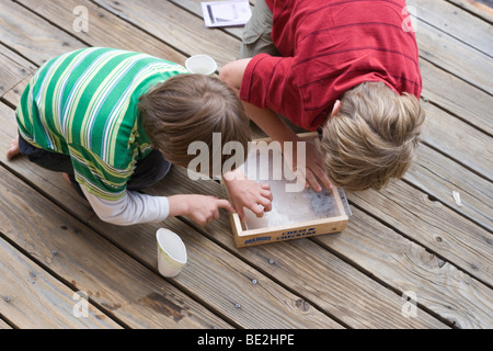 two boys peeking at baby garter snake in a box, outdoors - Stock Image