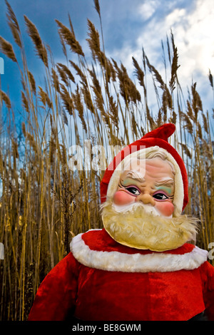A 1960's era stuffed Santa Claus stands in the evening light in front of golden rushes and a blue sky - Stock Image