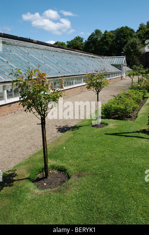 Remarkable English Greenhouse Stock Photos  English Greenhouse Stock Images  With Likable Rose Garden In Front Of Greenhouse At Croxteth Hall Gardens  Stock Image With Nice Garden Centre Twyford Also Frosts Garden Centre Woburn Sands In Addition Mikasa Garden Harvest And Container Garden Ideas As Well As Newark Garden Centre Additionally Artificial Flowers For Garden From Alamycom With   Likable English Greenhouse Stock Photos  English Greenhouse Stock Images  With Nice Rose Garden In Front Of Greenhouse At Croxteth Hall Gardens  Stock Image And Remarkable Garden Centre Twyford Also Frosts Garden Centre Woburn Sands In Addition Mikasa Garden Harvest From Alamycom