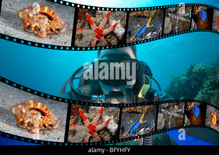Scuba DIver and Film strip of Underwater Photographs - Stock Image