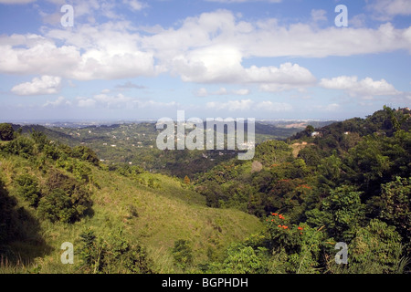 Puerto Rico Landscape - Stock Image