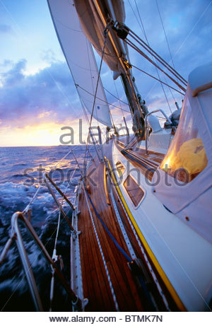 Sailing in the 'Gulf Stream', in the 'North Atlantic',  'Atlantic Ocean'. - Stock Image