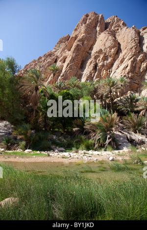 Oman, Wadi Bani Khalid. The lush green plants contrast with the arid rocks at this popular Wadi. - Stock Image