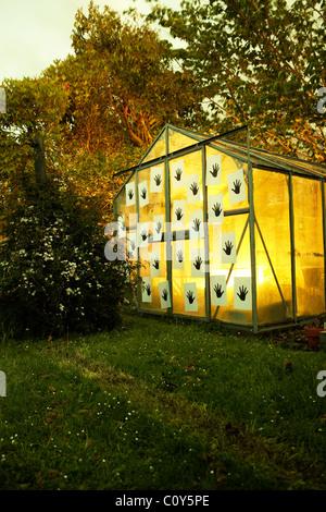 Hands on illuminated glasshouse at dusk. - Stock-Bilder