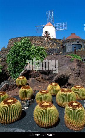 jardin de cactus in guatiza lanzarote canary islands spain europe stock