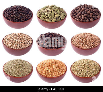 Assortment of different spices in ceramics bowls isolated on white - Stock Image