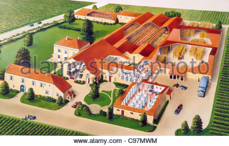 winery france cross section cross section cross sections Cross-section draw - Stock-Bilder