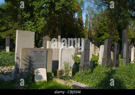 Novy zidovsky hrbitov the New Jewish cemetery Zizkov district Prague Czech Republic Europe - Stock Image