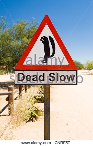 Sign warning drivers to be aware of meerkats, Solitaire, Namibia. - Stock Image