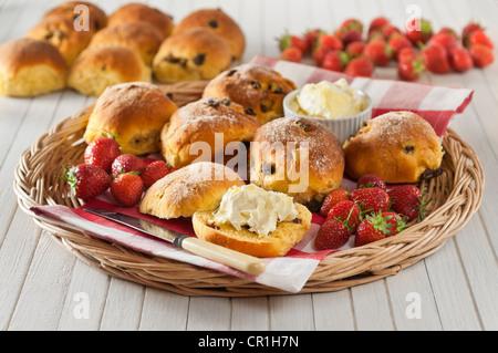 Cornish saffron buns with clotted cream Regional food UK - Stock Image