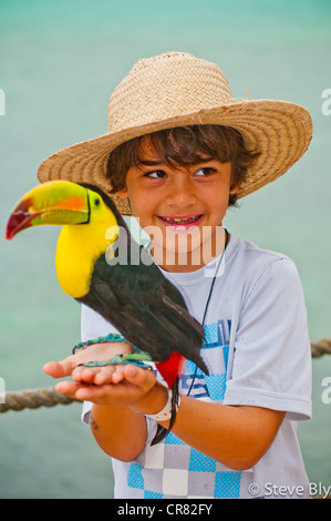 Young boy smiling while holding a Keel-billed toucan (Ramphastos sulfuratus), Riviera Maya, Quintana Roo, Mexico - Stock Image