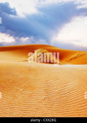 Sahara, Merzouga, desert, sand dunes, wind, nature, solitude, barren - Stock Image