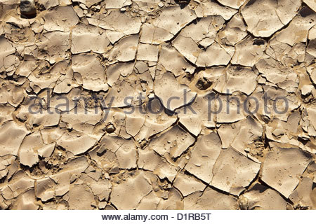 Morocco, M'Hamid, Dry earth. - Stock Image