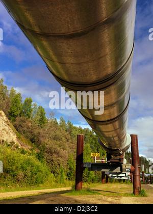 Trans Alaska Oil Pipeline photographed at Fairbanks Alaska - Stock-Bilder