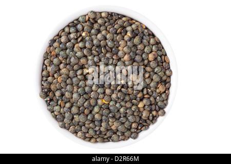 Puy Lentils - Stock Image