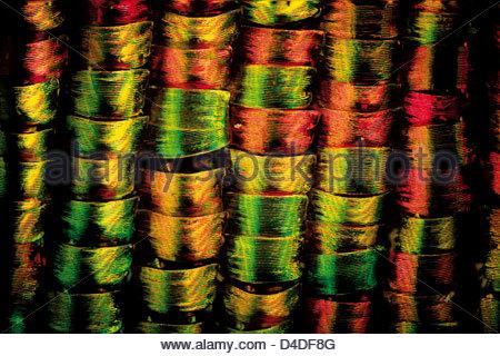 macro shot of an urania butterfly (Chrysiridia madagascarensis) x240 (Colour Enhanced) - Stock-Bilder