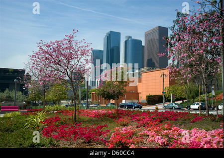 Colorful gardens in downtown Los Angeles - Stock Image