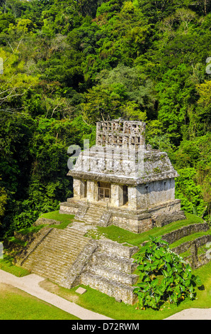 Temple of the Sun at the Mayan ruins of Palenque in Mexico - Stock Image