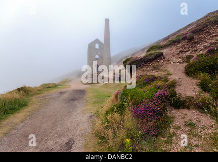 The ruins of Towanroath pumping engine house rising out of the mist at Wheal Coates at St. Agnes in Cornwall - Stock Image