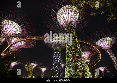 Garden By The Bay Fireworks singapore gardensthe bay stock photos & singapore gardens