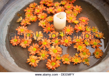 Flowers and candle in water - Stock Image