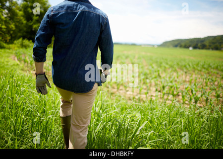 A farmer working in his fields in New York State, USA. - Stock Image