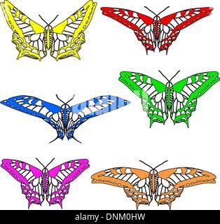 Vector set of beautiful butterflies. - Stock-Bilder